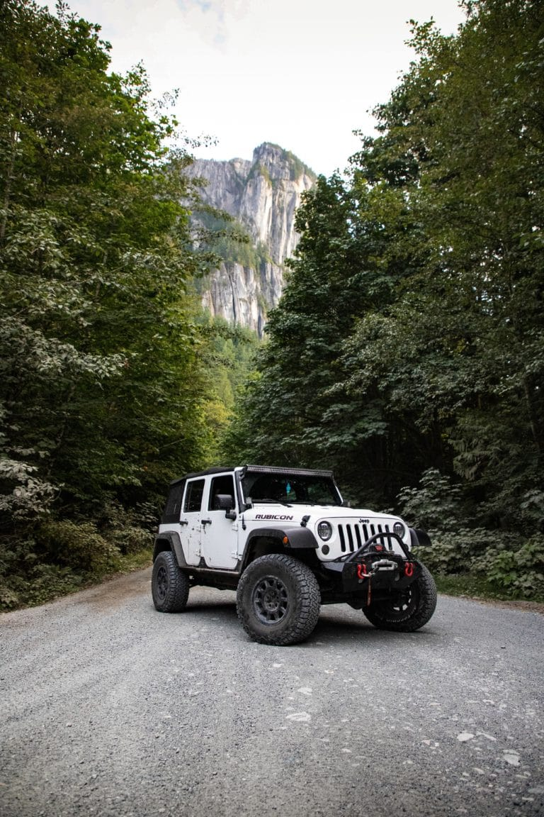 White Jeep in a forest